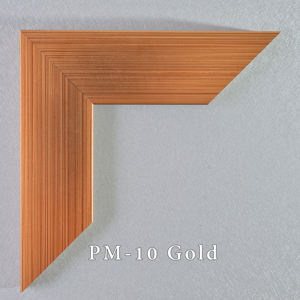 PM-10-Gold